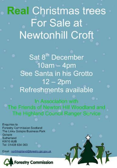 Photograph of Real Christmas Trees Sale 8th December - Newtonhill Croft