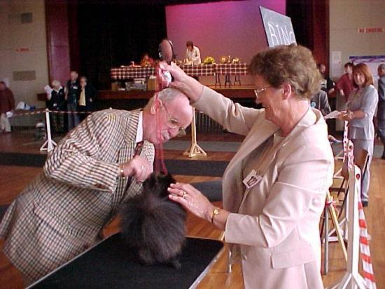 Photograph of Caithness Canine Club 2003 Open Dog Show