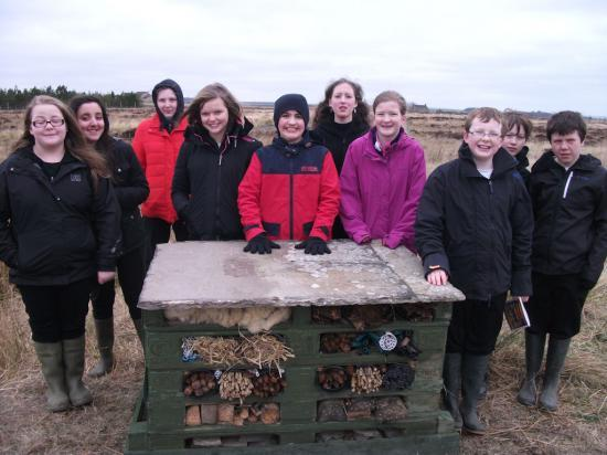 Photograph of Wick High Pupils Build Bug Hotel