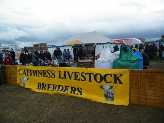 Photograph of Caithness County Show 2010
