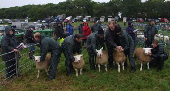 Photograph of Caithness County Show 2009