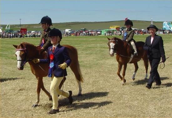 Photograph of Caithness County Show 2006