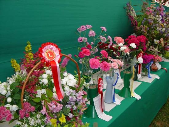 Photograph of Caithness County Show 2004