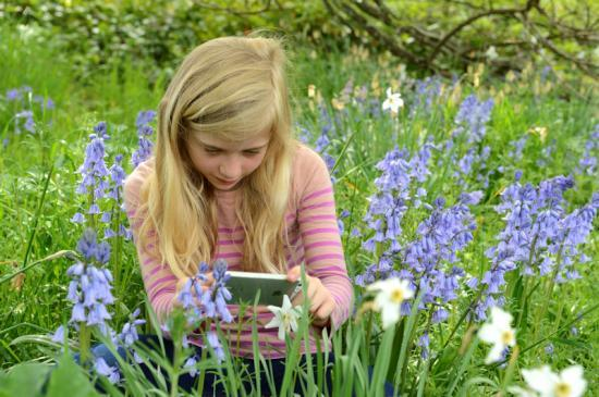 Photograph of Learning outdoors more engaging, says report