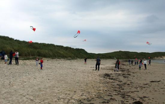 Photograph of Kites at Seadrift