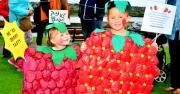 Thumbnail for article : Childrens Fancy Dress At Wick Gala 2016