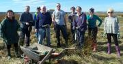 Thumbnail for article : More Tree Planting At Newtonhill near Wick