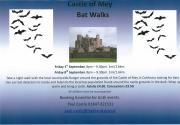 Thumbnail for article : Do You Want An Experience? - Try A Bat Night At Castle Of Mey