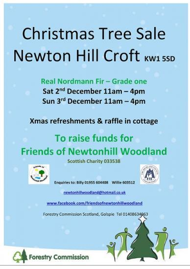 Photograph of Christmas Tree Sale - Newtonhill Croft
