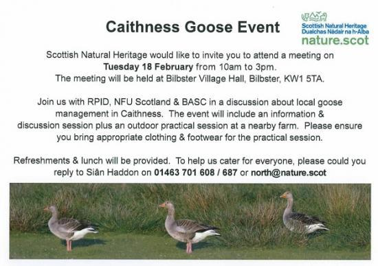 Photograph of Caithness Goose Event