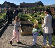 Thumbnail for article : Thurso Grows Spring Open Day