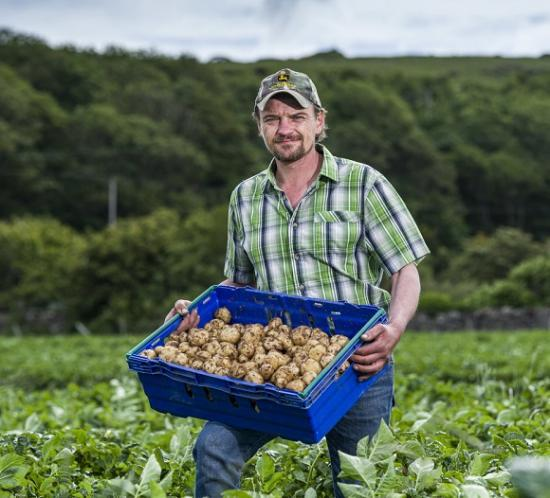 Photograph of AYRSHIRE EARLY POTATOES LAUNCH IN TESCO STORES